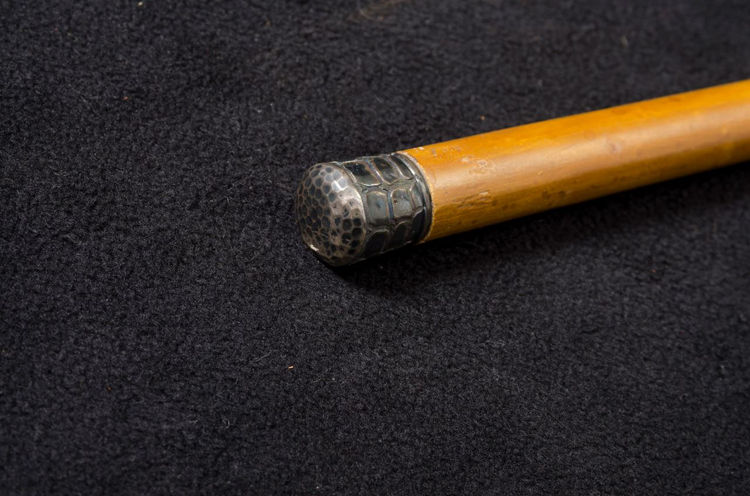Picture of Alligator Skin Silver Handled Cane