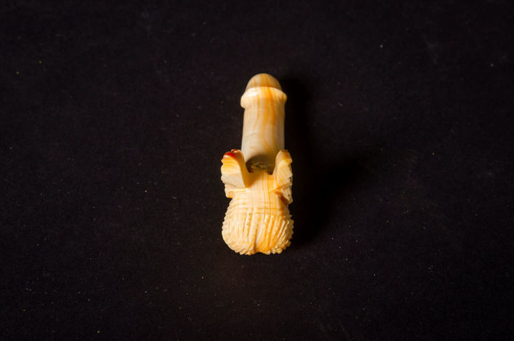 Picture of Winged Penis