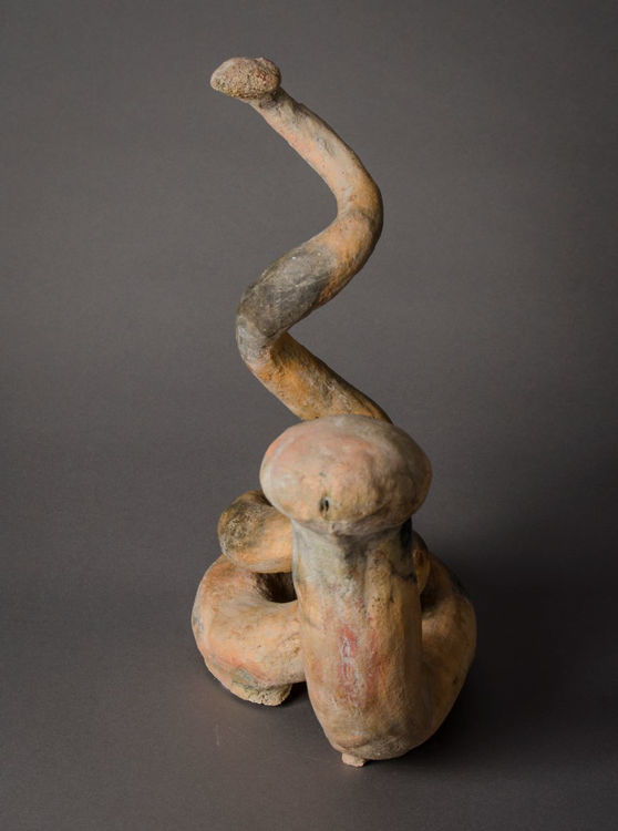 Picture of Clay Snake