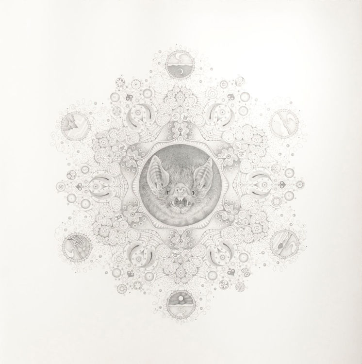 Picture of Snowflakes No. 95 'Ultrasonic Life'