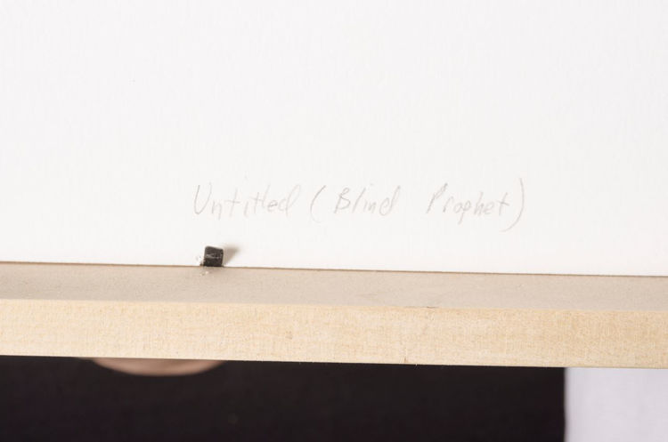Picture of Blind Prophet