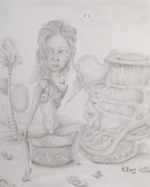 Picture of Vis Vitae