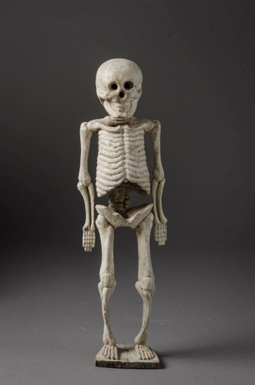 Picture of Hollow Skeleton