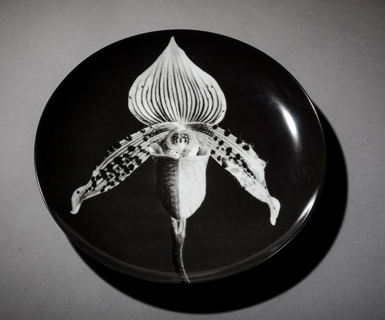 Picture of Orchid Plate