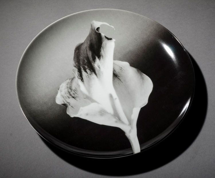 Picture of Flower Plate
