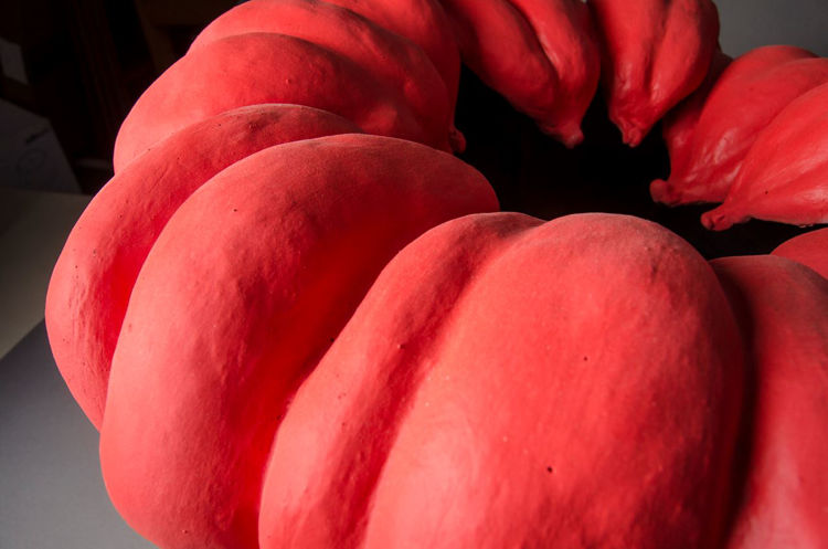 Picture of Red Akoda Pumpkin